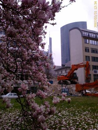 frankfurt-city-03